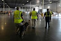 Dogs search cargo coming off international flights at Rickenbacker International Airport, where shipments that would normally come by sea have arrived by air (AFP/MEGAN JELINGER)