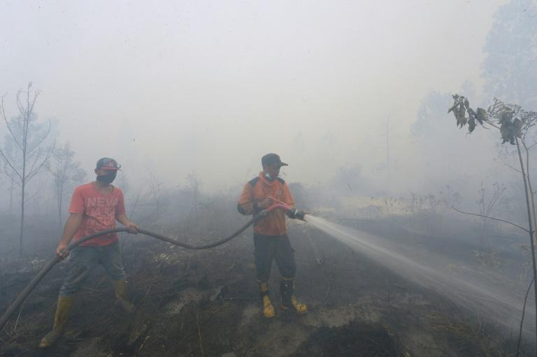 Indonesian firemen attempt to put out a fire in Kampar, Riau province, on September 13, 2015
