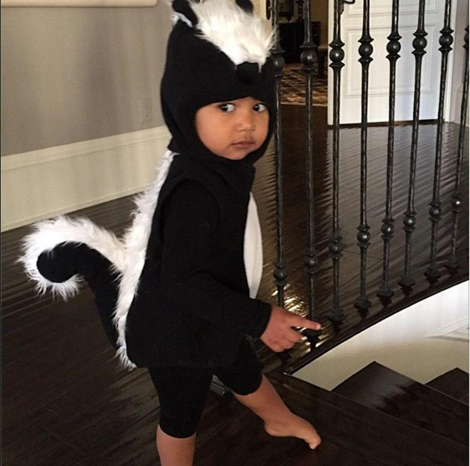 <p>North West dressed up as a skunk for Halloween, October 2014.</p>