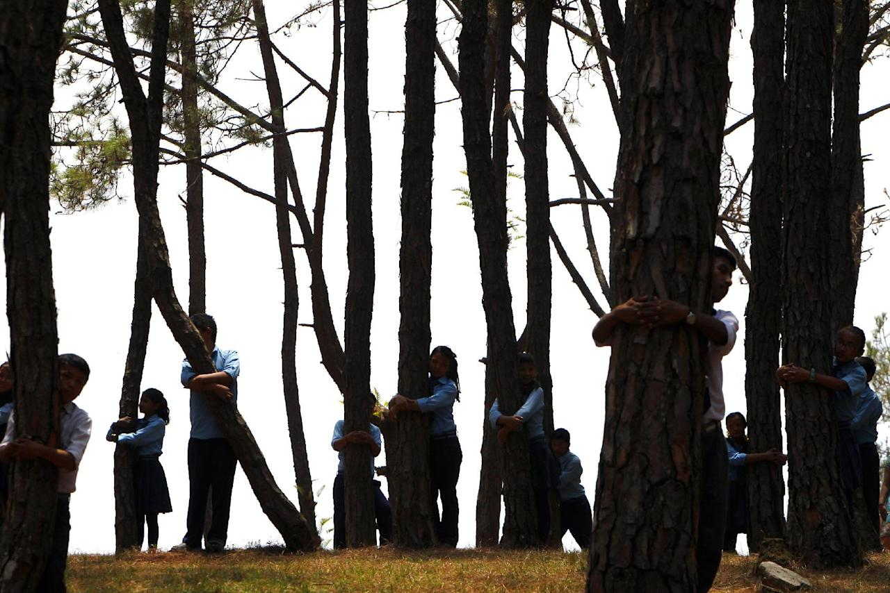 Nepalese students hug trees during a mass tree hugging on the World Environment Day on the outskirts of Katmandu, Nepal, Thursday, June 5, 2014. More than 2,000 people gathered in Nepal's capital on Thursday in a bid to set a world record for the largest tree hug. (AP Photo/Niranjan Shrestha)