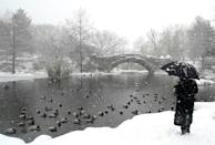 A person stands near the Gapstow Bridge in Central Park during a winter storm on February 1, 2021 in New York City