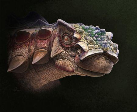 A life reconstruction of the head of the new armored dinosaur Akainacephalus johnsoni, which lived 76 million years ago in Utah, U.S. is seen in this image provided July 19, 2018.    Andrey Atuchin/Handout via REUTERS