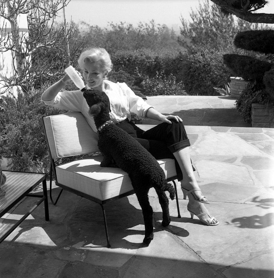 <p>At first glance, one might think Zsa Zsa Gabor is tending to a dog. But look closer and you'll realize it's actually her pet sheep. In 1956, the actress was photographed bottle-feeding her pet, fit with a studded collar, on the patio of her Bel-Air home. </p>