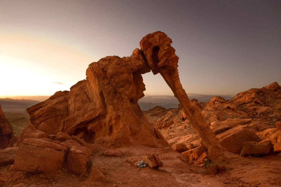 <b>The elephant rock formation in Valley of Fire State Park in Nevada</b> - A strange natural sandstone rock formation resembling an elephant. (Steffen and Alexandra Sailer/Ardea/Caters News)