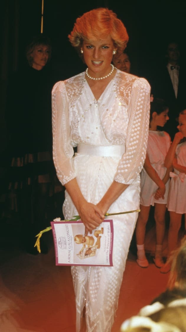 Diana At Charity Gala