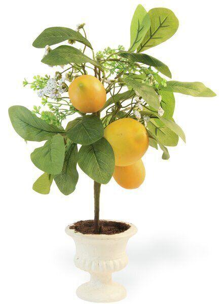"It's a great simulation of not living in the middle of a concrete jungle, if that's where the couple lives. Get it for $73.99 at <a href=""https://www.wayfair.ca/decor-pillows/pdp/rosalind-wheeler-lemon-tree-in-planter-c000972097.html?piid="" target=""_blank"" rel=""noopener noreferrer"">Wayfair.ca.</a>"
