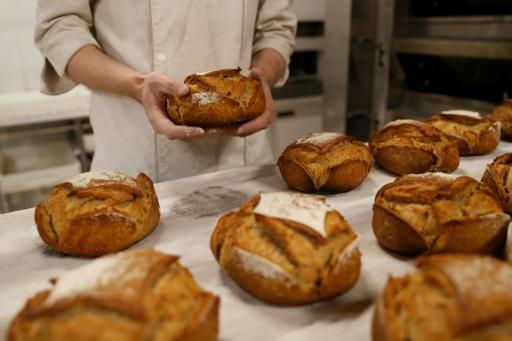 Low and high carb diets increase risk of early death, study finds