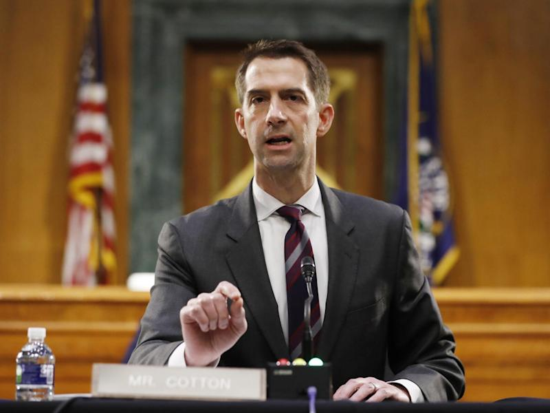 Tom Cotton speaking during a Senate Intelligence Committee nomination in May: (Getty Images)
