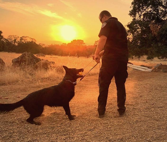 A look back at Hank's time as a K-9 with his handler, officer Chris Kofford of the Redding Police Department.