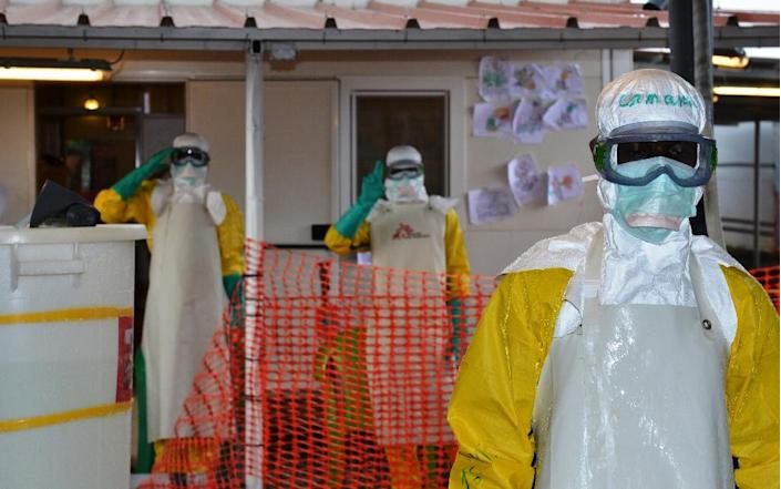 Accused of having wasted months before declaring war on the Ebola virus in west Africa, the WHO have developed a programme to better cope with disease outbreaks and health emergencies (AFP Photo/Cellou Binani)