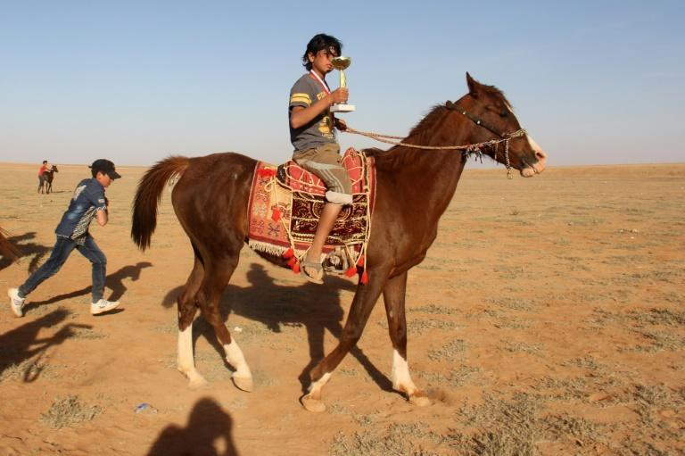 The Syrian war has also taken a toll on its Arabian horses, many of which have been killed or wounded in fighting