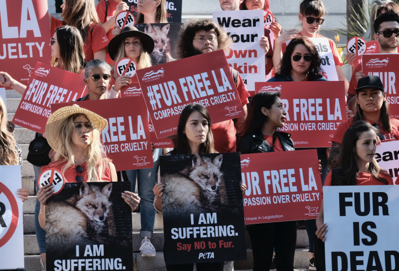 Protesters call for the ban of fur sales in front of City Hall in Los Angeles on Tuesday. (Richard Vogel/Associated Press)