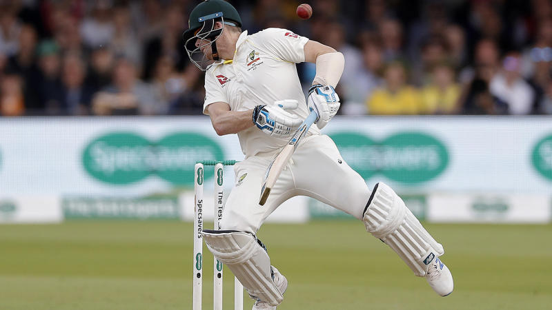 Steve Smith, pictured here being struck by a delivery from Jofra Archer.
