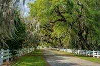 """<p>If you're curious about the south and its fascinating history, check out Louisiana's <a href=""""https://www.myneworleans.com/plantation-country/"""" rel=""""nofollow noopener"""" target=""""_blank"""" data-ylk=""""slk:Plantation Country"""" class=""""link rapid-noclick-resp"""">Plantation Country</a>. You'll be able to visit multiple plantation houses and learn the story behind each one, digging into details about the culture, architecture, music, and spirituality. An important aspect of visiting is taking in the history of the enslaved through eye-opening tours of historic locations. </p>"""