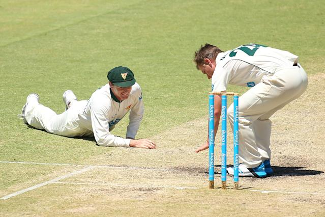 PERTH, AUSTRALIA - FEBRUARY 15: George Bailey of the Tigers looks up from the turf to Xavier Doherty during day four of the Sheffield Shield match between the Western Australia Warriors and the Tasmania Tigers at the WACA on February 15, 2014 in Perth, Australia. (Photo by Paul Kane/Getty Images)