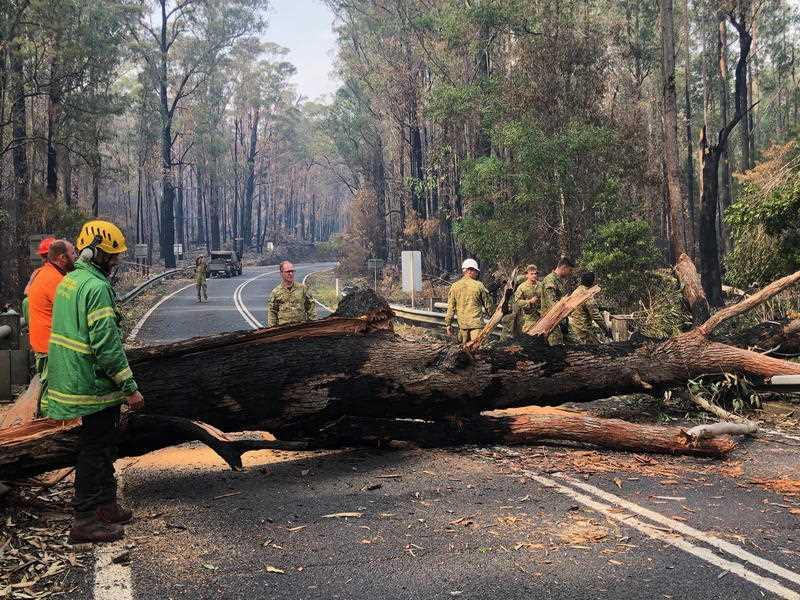 Crews clear a fallen tree on a road to allow more Mallacoota residents to return home to the bushfire-ravaged area.