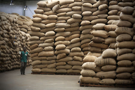 An employee of Olam International walks in a cashew warehouse in Bouake July 10, 2014. REUTERS/Thierry Gouegnon/Files