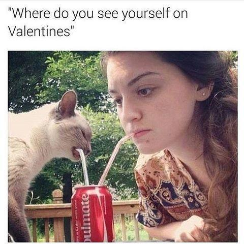"<p>The purrfect Valentine.</p><p><a href=""https://www.instagram.com/p/BBSSwgcu29l/?igshid=1d7r3lmkqi0r8"" rel=""nofollow noopener"" target=""_blank"" data-ylk=""slk:See the original post on Instagram"" class=""link rapid-noclick-resp"">See the original post on Instagram</a></p>"