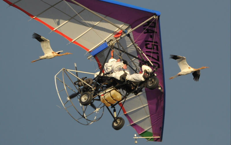 "FILE - In this Wednesday Sept. 5, 2012 file photo, Russian President Vladimir Putin flies in a motorized hang glider alongside two Siberian white cranes, on the Yamal Peninsula, in Russia.On Thursday, Nov. 1, 2012, Interfax reported that Putin's spokesman Dmitry Peskov said the president had pulled a muscle. ""It happened before Vladivostok. He was suffering from muscle pain then"", Peskov said. Peskov told state news agency RIA Novosti this was an old injury and denied it was caused by his flight with cranes. (AP Photo/RIA-Novosti, Alexei Druzhinin, Presidential Press Service, File)"