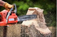 """<p>They must really be sawing a lot of logs up North. <a href=""""https://www.prevention.com/health/a20500694/9-best-solutions-to-solve-your-snoring/"""" rel=""""nofollow noopener"""" target=""""_blank"""" data-ylk=""""slk:Here are some tried-and-true fixes"""" class=""""link rapid-noclick-resp"""">Here are some tried-and-true fixes</a> you can casually offer to your partner.</p>"""