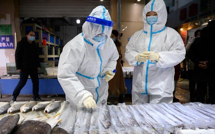 A staff member from the center for disease control and prevention collects a swab from a seafood stall for nucleic acid testing, at a market following the coronavirus outbreak, in Taiyuan, Shanxi province - via Reuters
