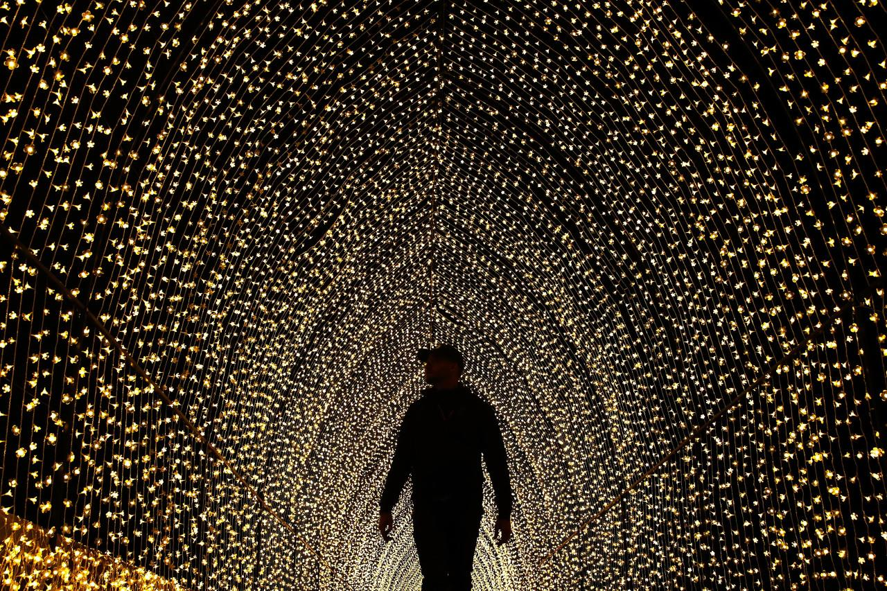 A man walks inside the 'Cathedral of Light' at The Royal Botanic Gardens in Sydney. (Brendon Thorne/Getty Images)