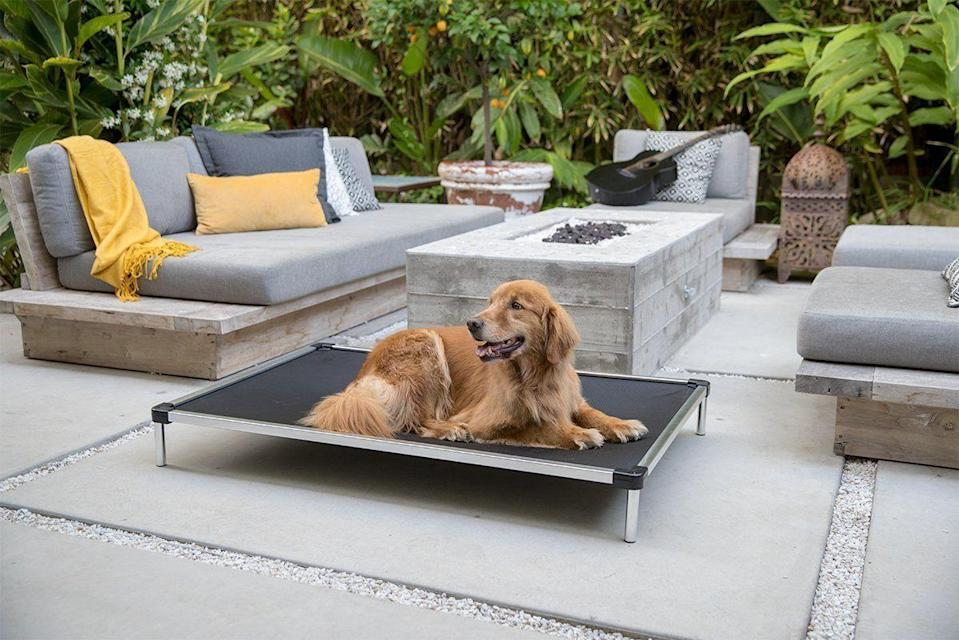 """<p>k9ballistics.com</p><p><strong>$129.00</strong></p><p><a href=""""https://k9ballistics.com/collections/chew-proof/products/chew-proof-elevated-dog-bed?variant=17921261273159"""" rel=""""nofollow noopener"""" target=""""_blank"""" data-ylk=""""slk:Shop Now"""" class=""""link rapid-noclick-resp"""">Shop Now</a></p><p>If you've ever purchased your dog a soft, fluffy bed, and come home to find the stuffing all over the house, it may be time to invest in an indestructible bed. It's durable and geared towards persistent chewers. </p>"""