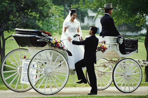 Man seriously hurt in wedding horse and carriage crash