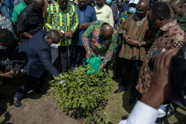 Ghana's President Nana Akufo Addo (C) joined in by planting a Lignum Vitae (Tree of Life) at the presidential residence