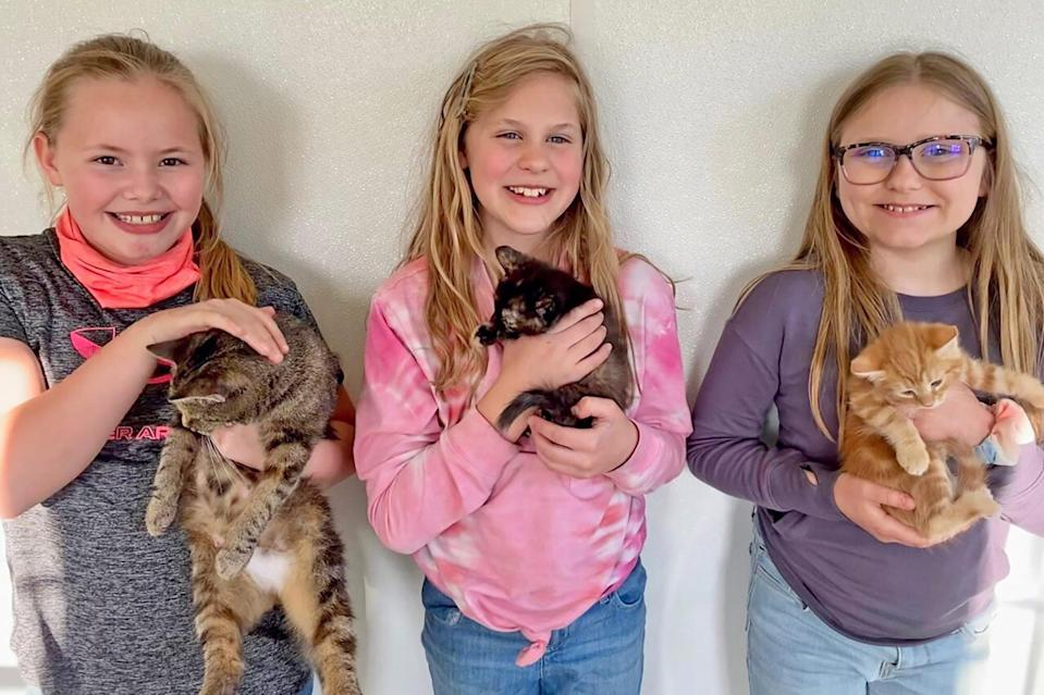 4th Graders Rescue Cats During Recess