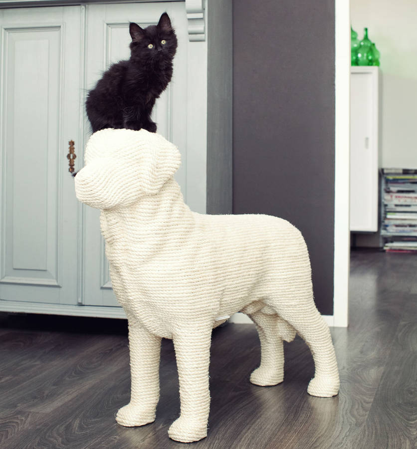 """<p>If you've got the space and the extra cash treat your feline friend to a scratch post with a good dose of humour. <br></p><p>£695 <a href=""""http://www.notonthehighstreet.com/spotted/product/dog-cat-scratcher"""" rel=""""nofollow noopener"""" target=""""_blank"""" data-ylk=""""slk:Not On The High Street"""" class=""""link rapid-noclick-resp"""">Not On The High Street</a></p>"""