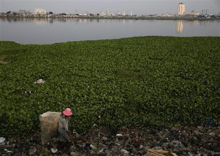 Saidi, a former fisherman, walks as he collects plastic cups for recycling at Pluit lake in Jakarta