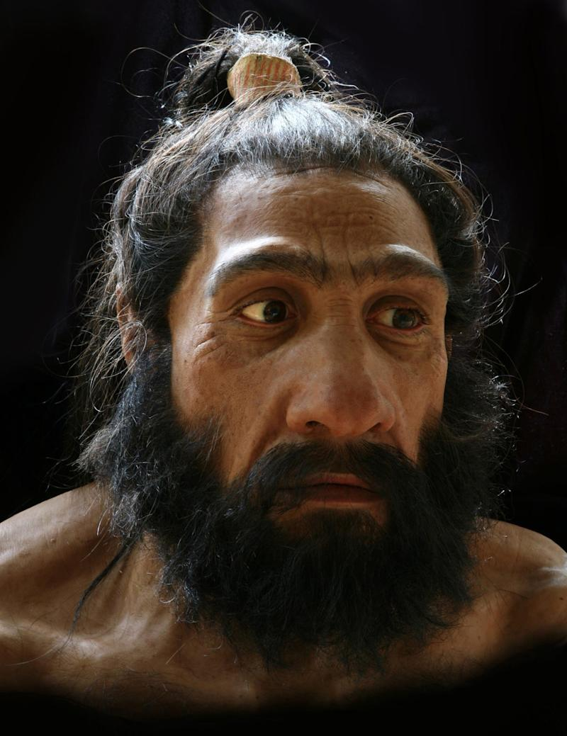 A bust of a Neanderthal man at the Smithsonian's National Museum of Natural History.
