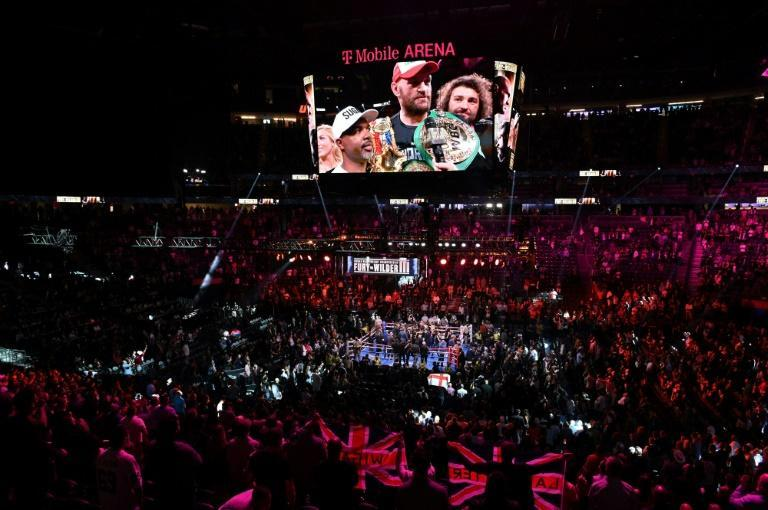 Fury revealed afterwards he had sought to pay his respects to Wilder after the fight, but had been rebuffed (AFP/Robyn Beck)