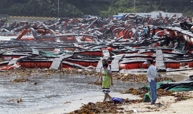 South Korean residents pass by abalone farms destroyed by Typhoon Muifa in Wando, South Korea, Monday, Aug. 8, 2011. Typhoon Muifa pounded South Korea's west coast, leaving at least one dead and two others missing as it proceeded northward to reach the capital of Seoul Monday morning, the meteorological office and the emergency control agency said. (AP Photo/Yonhap, Hyung Min-woo)  KOREA OUT