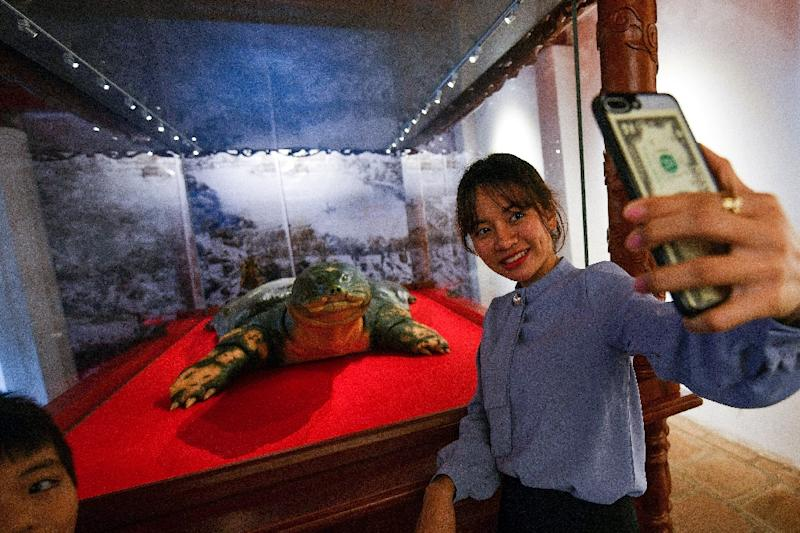 Say cheese: A woman takes selfie with a sacred giant turtle embalmed in Hanoi after its 2016 death (AFP Photo/Manan VATSYAYANA)