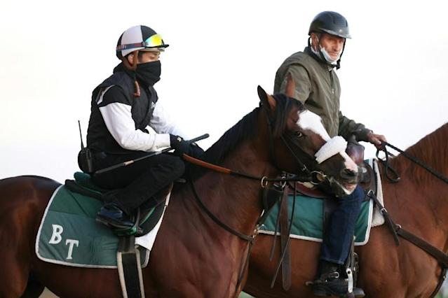 Belmont Stakes favorite Tiz the Law with jockey Manny Franco aboard, left, is watched over by trainer Barclay Tagg, mounted at right, ahead of a workout before Saturday's race, the first in the US flat racing Triple Crown series (AFP Photo/AL BELLO)