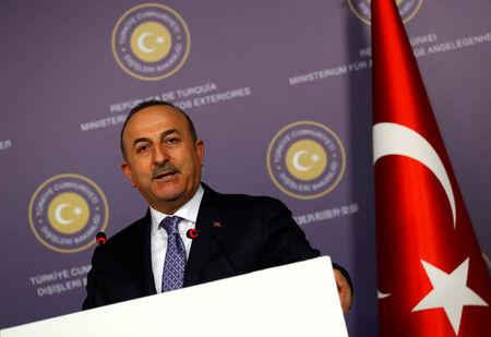 Turkey dismisses French marks on Syria campaign as 'insults'
