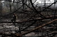 A Brazilian soldier walks in a burnt tract of the Amazon forest as it is cleared by farmers, in Rio Pardo