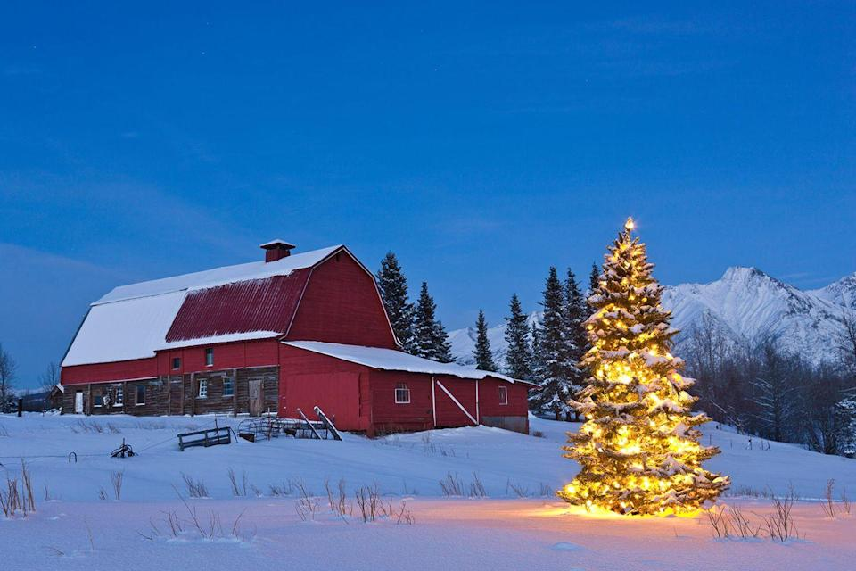 <p>Just try looking at this scene from Palmer, Alaska and not feel the spirit of Christmas.</p>