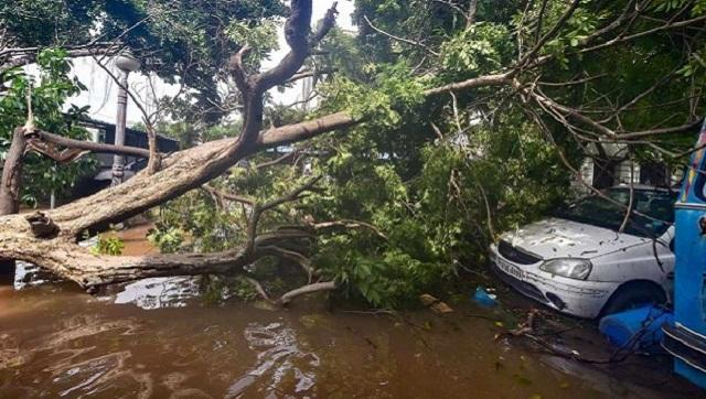 Cyclone Nivar claimed four lives in Tamil Nadu and Andra Pradesh combined when it hit the southern states on Thursday. PTI