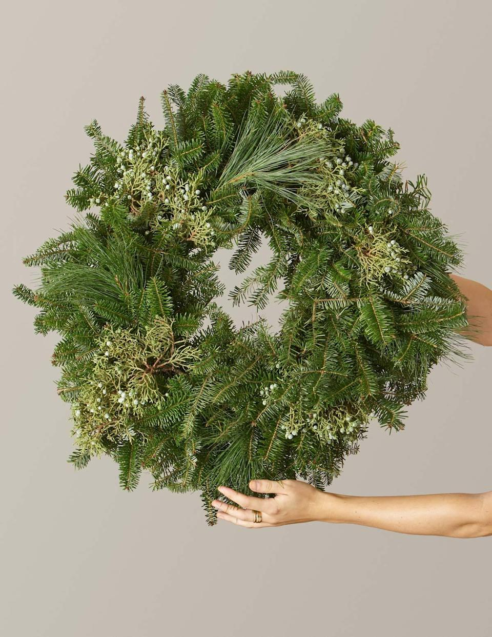 <p>This holiday season, show your family some love with this <span>The Sill Holiday Wreath</span> ($50).</p>