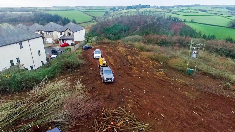 The area of trees was cleared in January (Picture: Andrew Love/SWNS)