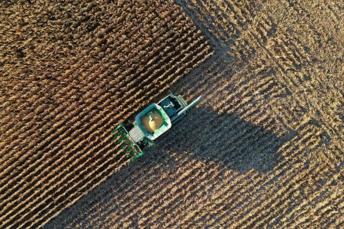 FILE PHOTO: Farmer Roger Hadley harvests corn from his fields in Woodburn, Indiana,