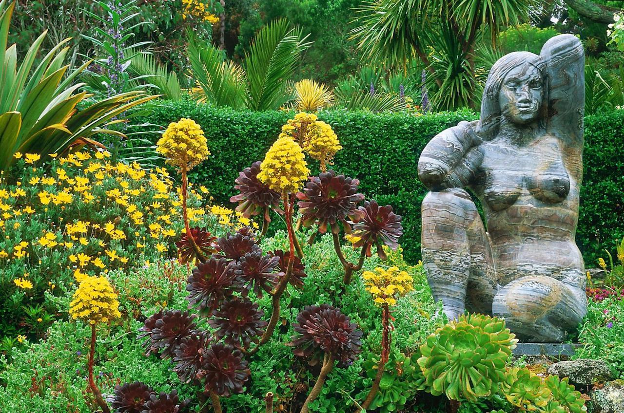 "<p>At the heart of the Isles of Scilly, the <a href=""https://www.tresco.co.uk/enjoying/abbey-garden"">Tresco Abbey Garden</a> displays more than 20,000 different plants from sub-tropical climates across the world. Augustus Smith founded the botanical paradise in 1834 around the ruins of the island's Benedictine Abbey. Remains of the former medieval monastery have become a central part of the garden with flowering vines winding around the storied arches and walls. Throughout the garden, the plants are laid out geographically, with the hotter, top terraces housing South African and Australian species, and the lower section sheltering vegetation from New Zealand and South America.<br></p>"