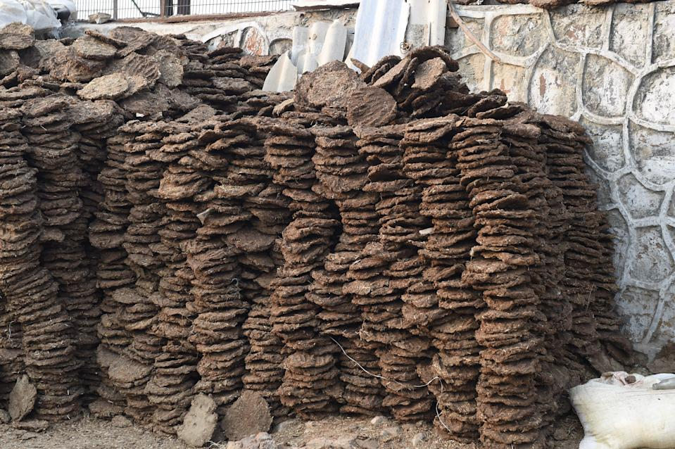 <p>US customs destroyed cow dung cakes that were found in the baggage of an Indian passenger</p> (AFP via Getty Images)