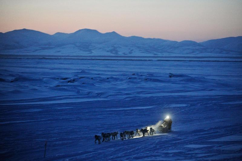 Dallas Seavey pulls in to the checkpoint in Unalakleet, Alaska, during the Iditarod Trail Sled Dog Race on Sunday, March 11, 2012. (AP Photo/Anchorage Daily News, Marc Lester)