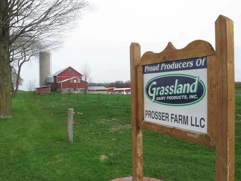 This Wednesday, April 19, 2017 photo shows a dairy farm owned by Tim Prosser and his father, John, in Columbus, Wis. After their sole milk buyer, Grassland Dairy, dropped them due to changes in Canadian policy that decreased the demand for U.S. milk, they face having to sell their 100 milking cows and shut down the business that's been in the family since 1973 if they can't find a new buyer by the end of the month. A handful of Wisconsin dairy farmers whose Canada market evaporated in a trade dispute were weighing offers from new buyers on Tuesday, April 25, but others were running out of time before an expiring contract risked putting them out of business. (AP Photo/Cara Lombardo)