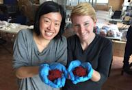 """<h2>Emily Miller, Co-Founder of Rumi Spice</h2> <p>Emily and her co-founder, Kimberly Jung, both served in Afghanistan as U.S. Army Captains. Disheartened by the lack of opportunity in the country—the people of which have been held hostage by both war and the opium trade—the two women launched <a href=""""http://www.rumispice.com/"""" rel=""""nofollow noopener"""" target=""""_blank"""" data-ylk=""""slk:Rumi Spice"""" class=""""link rapid-noclick-resp"""">Rumi Spice</a>, a company which sources saffron from rural Afghan farmers. Their company is now one of the largest employers of women in Afghanistan.</p> <h4>Chicago Tonight</h4>"""