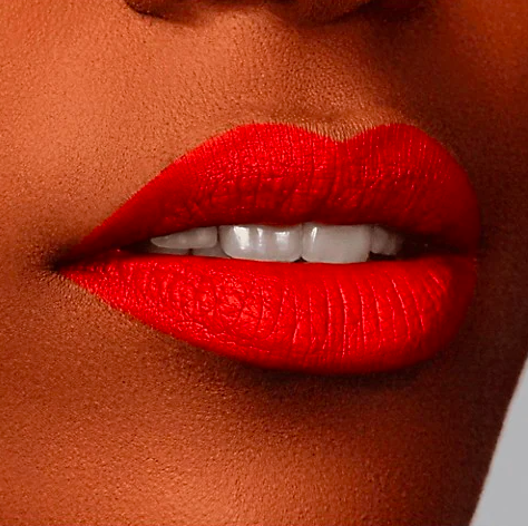 Rouge d'Armani Matte Lipstick. Image via The Bay.